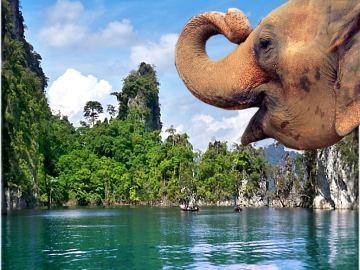 Südthailand Rundreise Khao-Sok-Nationalpark + Koh Phi Phi